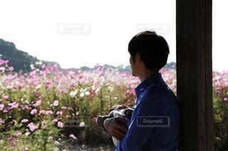 コスモス畑の前で赤ちゃんを抱く男性の写真・画像素材[3841068]