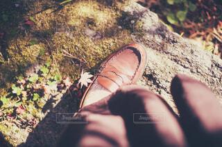 ローファーに刺さったカエデの葉っぱの写真・画像素材[3973369]