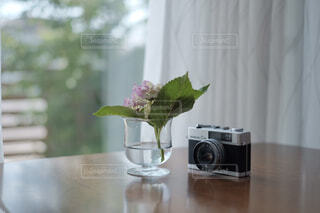 フィルムカメラと一輪挿しの紫陽花の写真・画像素材[4312676]