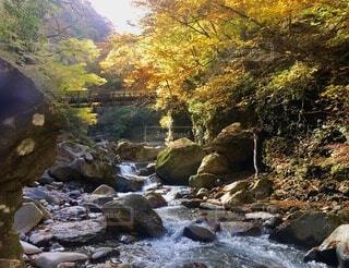 高原山 滝巡りの写真・画像素材[3841226]