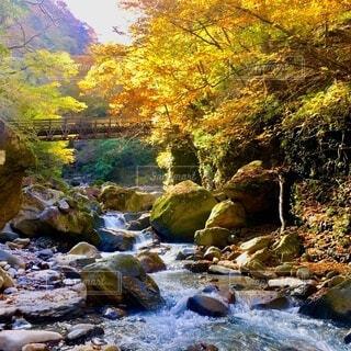 高原山 滝巡り 紅葉 ハイキング 登山の写真・画像素材[3862963]