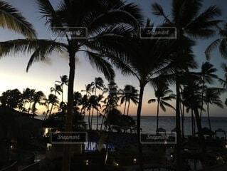 ハワイの夕日の写真・画像素材[3844229]