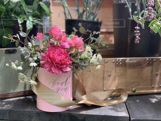 光に当たる花の写真・画像素材[3929019]