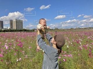 ママの高い高いうれしいね!の写真・画像素材[3897949]