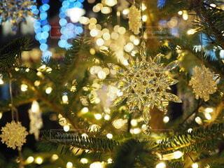 クリスマスツリーの写真・画像素材[3983103]