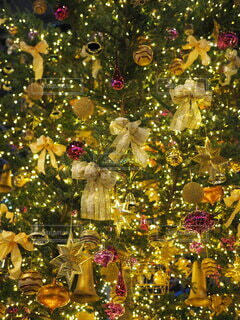 クリスマスツリーの写真・画像素材[3983100]