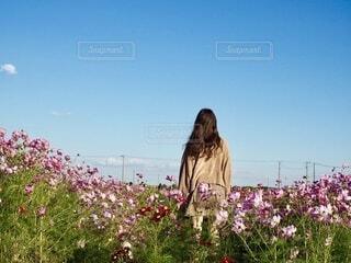 花畑を見ている人々のグループの写真・画像素材[3905865]