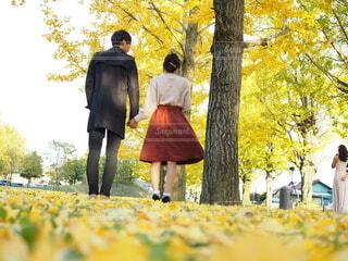 木の隣に立っている人の写真・画像素材[3905870]