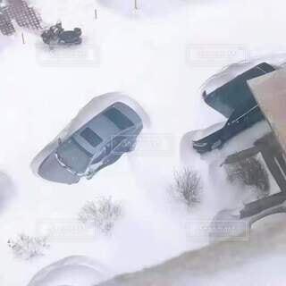 雪に埋められた車の写真・画像素材[3920952]