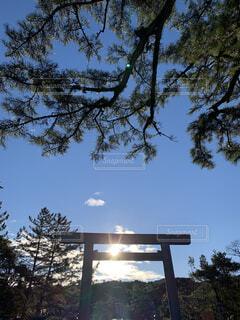 朝日,神社,鳥居,正月,お正月,日の出,新年,初日の出