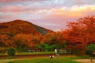 夕日に染まる公園の写真・画像素材[3860805]