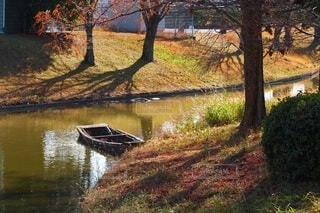 秋の終わりの写真・画像素材[3988543]