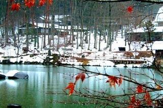 飛騨の雪景色の写真・画像素材[4098492]