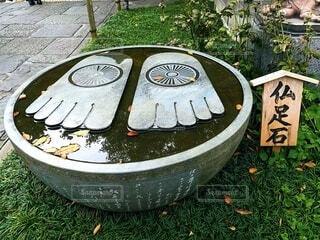 仏足石の写真・画像素材[3917755]