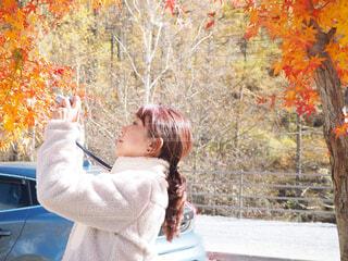 紅葉の木の前でカメラを向けてる女性の写真・画像素材[3961435]