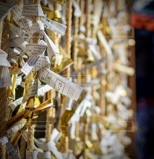 結ばれた金色のおみくじの写真・画像素材[4056703]