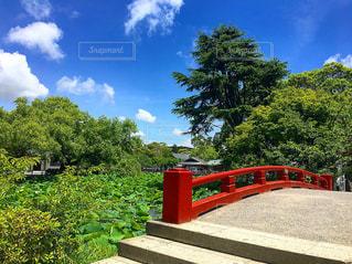 近くの橋の上の写真・画像素材[1248961]