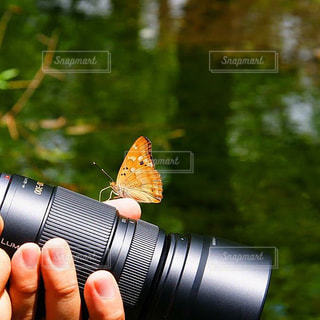 カメラの写真・画像素材[1420162]