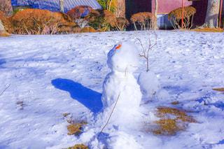 近く雪に覆われたフィールドの写真・画像素材[1658392]