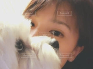 犬と一緒にの写真・画像素材[3899103]