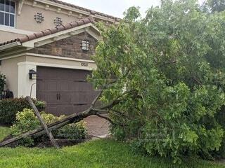 トロピカルストームの痕は住宅街に倒木だらけ。の写真・画像素材[3870796]