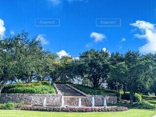 樹木に囲まれた階段と噴水、青空と共にの写真・画像素材[3916971]