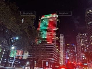 マイアミもクリスマス色のタワーが出現の写真・画像素材[3920341]