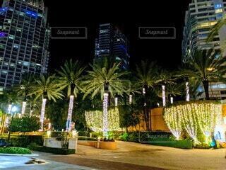 イルミネーションが溢れたマイアミの高層ビルの入口の写真・画像素材[3922258]