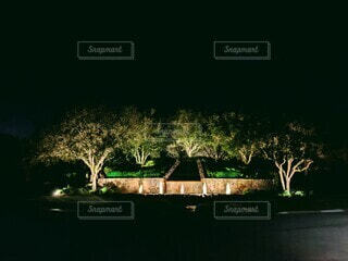 ライトアップされた夜の噴水、緑の仕上がりの写真・画像素材[3922987]