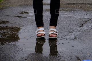 雨上がりの夏の写真・画像素材[3868049]