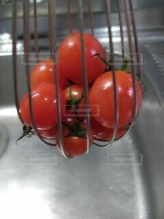 洗われとらわれたトマトの写真・画像素材[3981133]