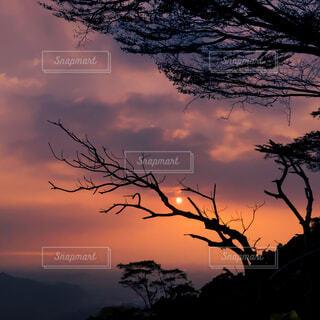 自然,風景,空,屋外,太陽,朝日,雲,綺麗,夕暮れ,山,シルエット,美しい,樹木,正月,お正月,台湾,日の出,グラデーション,新年,初日の出,草木,屏東