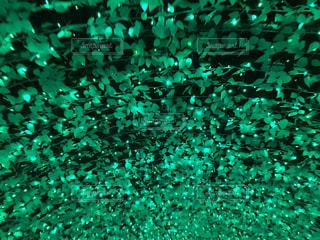 緑 - No.453205