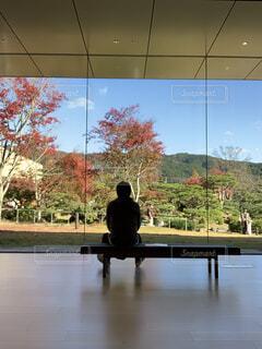 紅葉を眺める後ろ姿の男性の写真・画像素材[3911524]