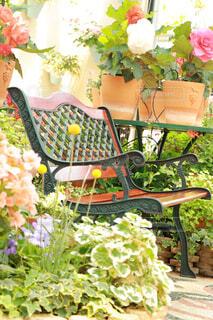 ガーデンのベンチと花の写真・画像素材[4334863]