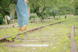線路(廃線)を歩くハイヒールの写真・画像素材[4411755]