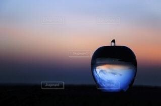 ガラスの林檎に閉じ込めての写真・画像素材[3895565]