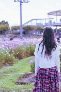 コスモスを見つめる少女の写真・画像素材[3912244]