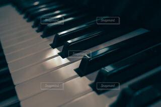 エレクトーンの鍵盤の写真・画像素材[3925186]