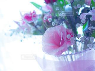 花のクローズアップの写真・画像素材[3929257]