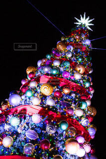 クリスマスツリーの写真・画像素材[3977400]