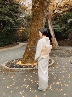 結婚式のお呼ばれコーディネートは着物で。の写真・画像素材[3912834]