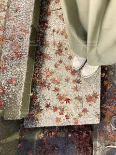 石の階段の上にできた美しい落ち葉の模様の写真・画像素材[3972093]