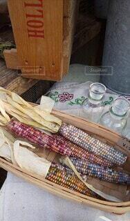 虹色のトウモロコシの写真・画像素材[3902306]