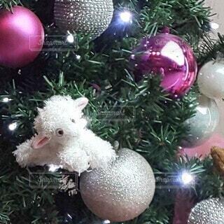 クリスマスツリー オーナメントの写真・画像素材[3953095]