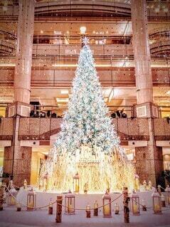 クリスマスツリーの写真・画像素材[3974224]