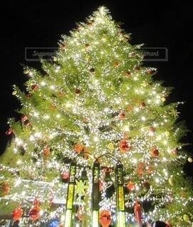 赤レンガ倉庫のクリスマスツリーと幸せの鐘の写真・画像素材[3985375]