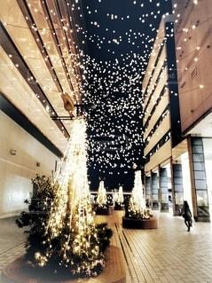 クリスマスの夜景の写真・画像素材[3989079]