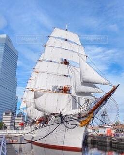 日本丸の総帆展帆の写真・画像素材[4002818]