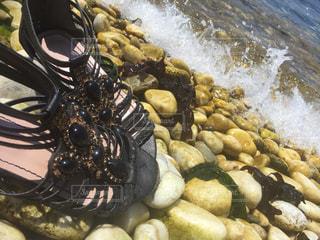 海の写真・画像素材[171280]